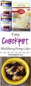 Crockpot Blackberry Dump Cake Recipe