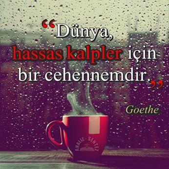 """✔""""Dünya, həssas qəlblər üçün bir cəhənnəmdir.,, #Goethe"""