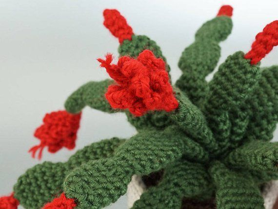 Cool Crochet Cactus Roundup! (With images) | Crochet plant ... | 428x570