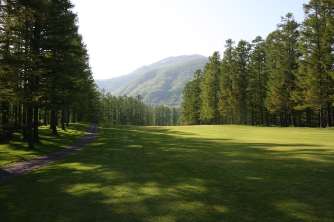 A view back towards the second tee at Niseko Village Golf Course. This is a majestic par five that stretches away between the rows of  pine trees with mountains peaking out in the background.