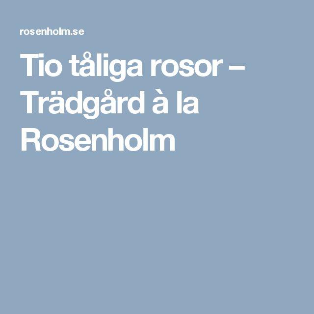 Tio tåliga rosor – Trädgård à la Rosenholm