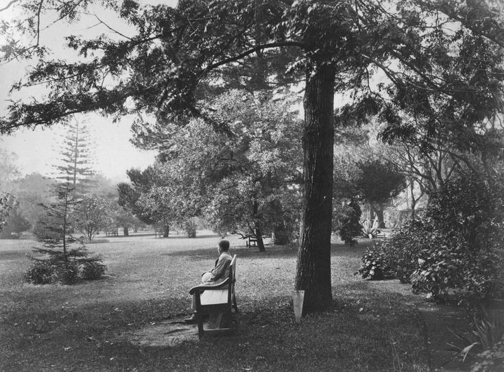 Botanic Gardens in Sydney in 1880. •National Library of Australia•