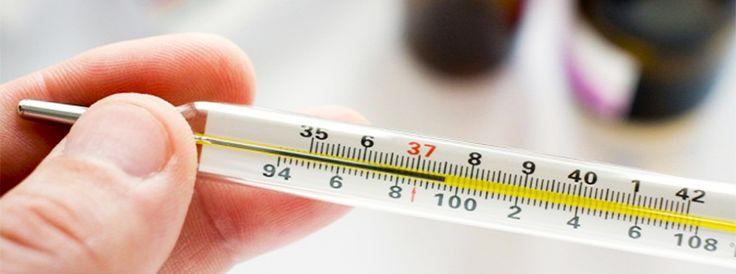 Если температура тела 37.2 каждый день... » Женский Мир