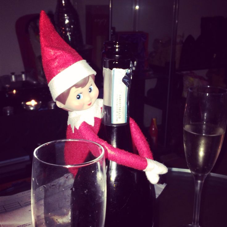 Mitsy has sneaked in early, just to get a swig of our Prosecco. Naughty Mitsy.
