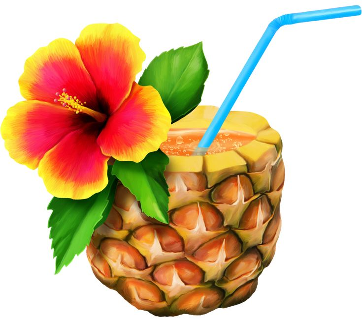 HAWAIIAN ALOHA TROPICAL