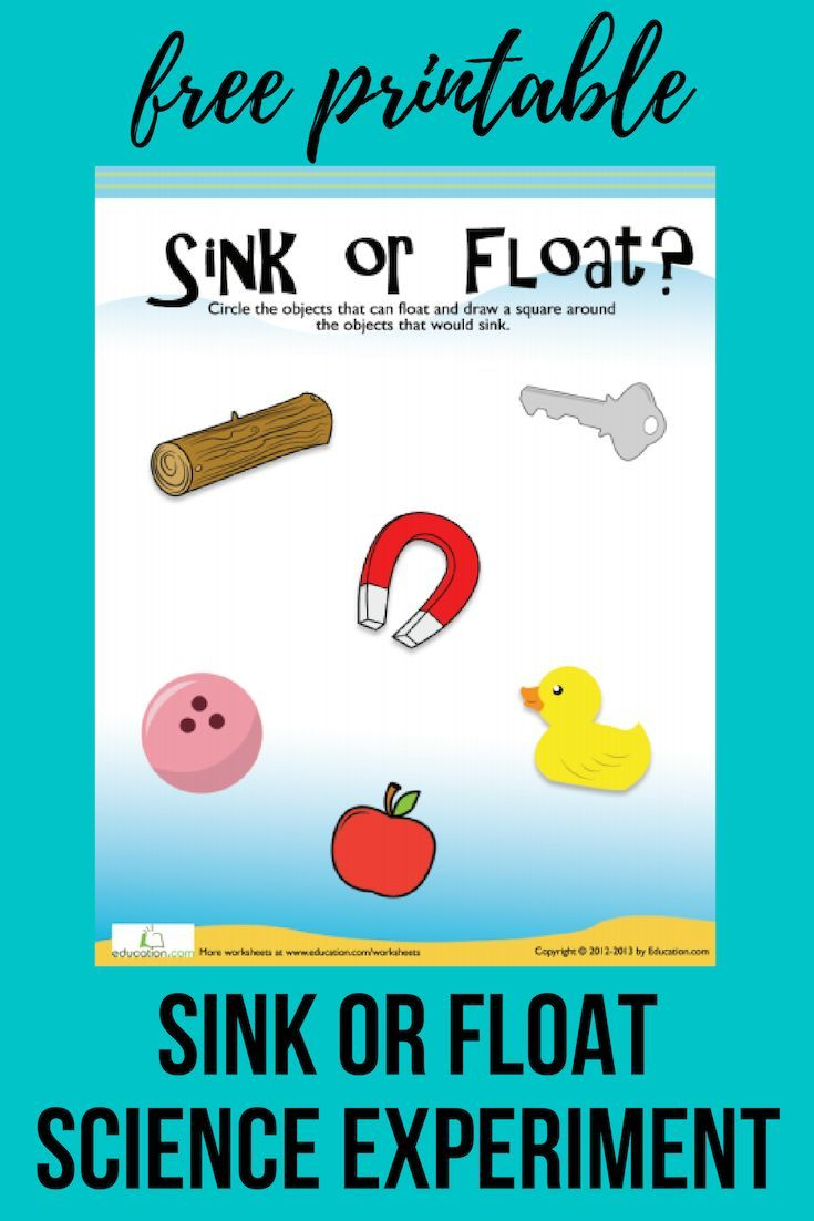 Floating And Sinking Worksheet Education Com Sink Or Float Science Experiments Earth Science Projects