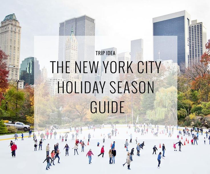 Top things to do in new york city this holiday season for Things to do in new york in winter
