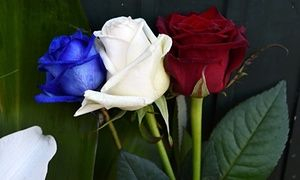 Tricolor roses in front of the French consulate in Krakow, Poland in tribute to the victims of the Paris attacks.