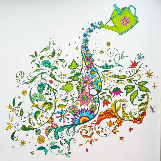 Secret Garden Coloring Book Art 257 Best Pages Images On