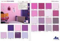 Palette de couleurs violet ©Dulux Valentine