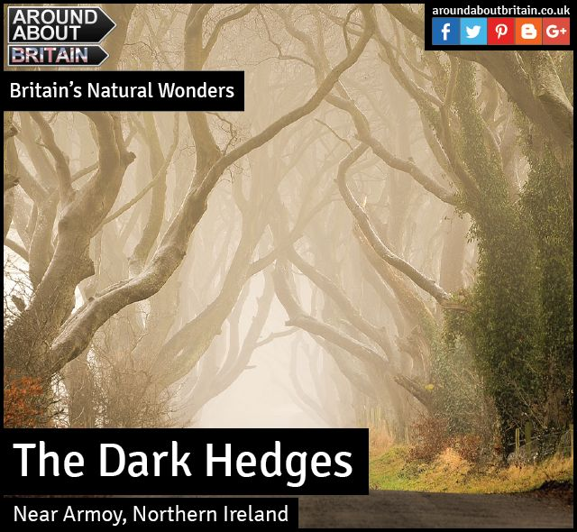 Britain's Natural Wonders:  The Dark Hedges (Near Armoy, Northern  Ireland)  Hit television series Game of Thrones saw one of Northern Ireland's most loved landmarks, the Dark Hedges, introduced to a whole new audience when they featured in the second series.