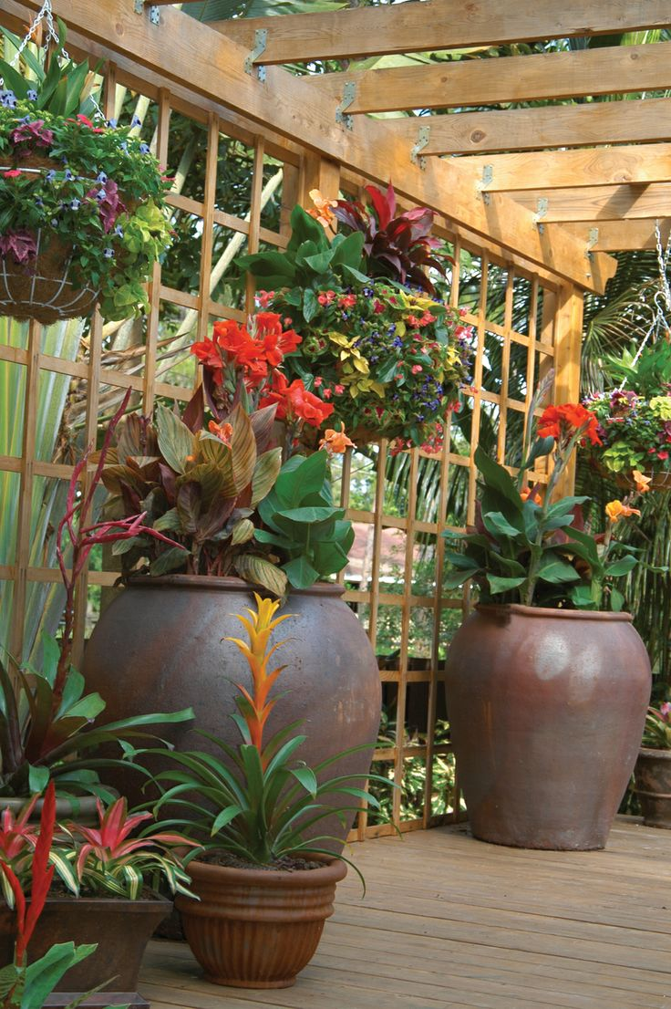 This Palm Beach county container garden features
