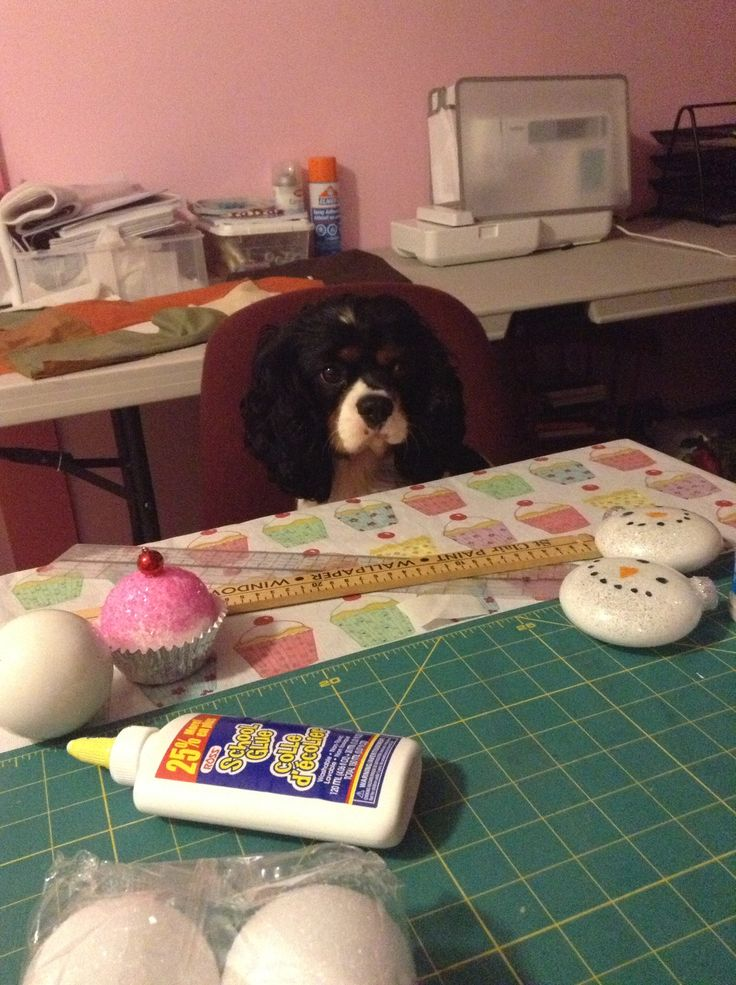 Tut crafting with me.