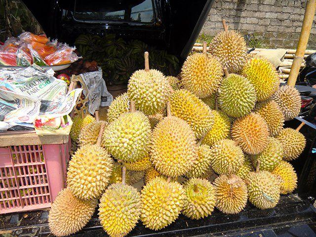 9/11(月)バリ島ウブドのお天気は晴れ。室内温度27.7℃、湿度67%。ドリアンの季節到来??スーパーや市場、道端で売る光景を良く見かけます。周辺には独特のアノニオイ。。。うーん、好きになれないな(苦笑) #今日も良い日になりますように #バリ #ウブド #天気 #フルーツ
