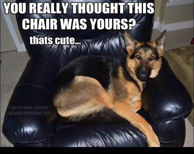 you thought this chair was yours? ;)
