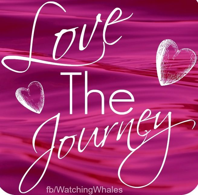 Image result for love the journey quotes