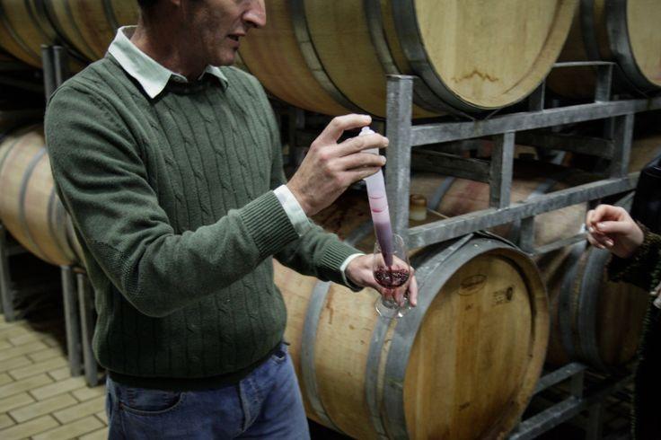 Fairview Wine Tasting-0669