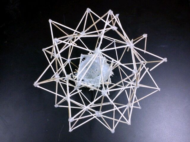 Image result for egg drop project ideas that work