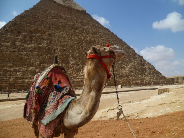 Planning for a trip to #Egypt? Here are some wonderful #travel tips from a local. #ttot #wanderlust #travelblog #bucketlist #destinations #placestovisit