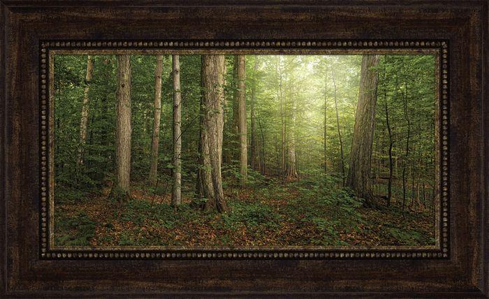 Sacred Grove Robert A Boyd Art Sacred Groves Canvas Frame Lds Art