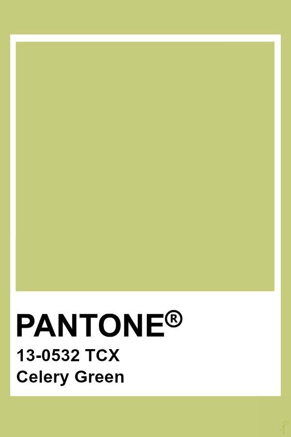 Pantone Celery Green Pantone Color Pantone Colour Palettes Green Colour Palette