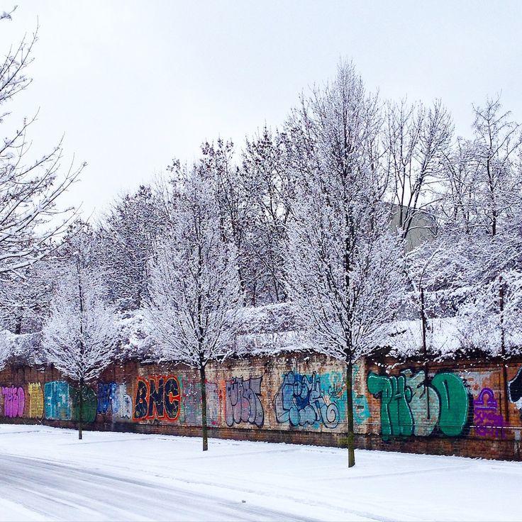 #winter #berlin #alttreptow #ice #snow #graffiti #trees #road
