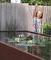 25 beste idee n over vijvers op pinterest tuinvijvers achtertuin vijvers en koi vijvers - Bassin tuin ontwerp ...