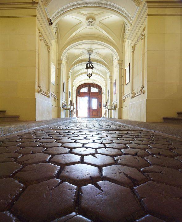 Pszczyna - zamek i jego historia, zwiedzanie, wnętrza, cennik