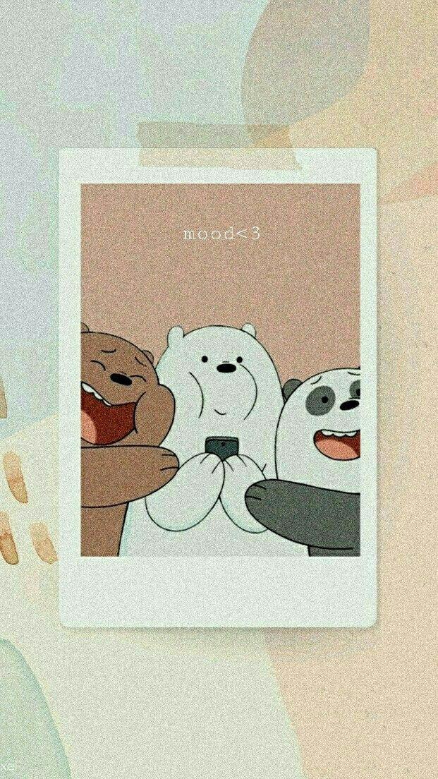 Alfani Alraqamiu Cute Panda Wallpaper Panda Wallpapers Wallpaper Iphone Cute
