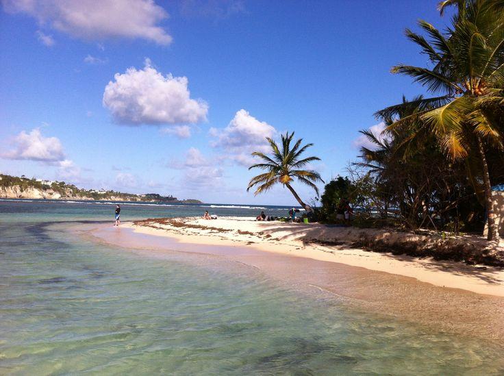 #Plage de l'île #Gosier. #Guadeloupe #Antilles #France