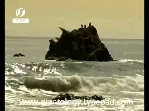 ▶ Unknown Giant Monster found after tsunami - YouTube ... Pub May 1, 2013