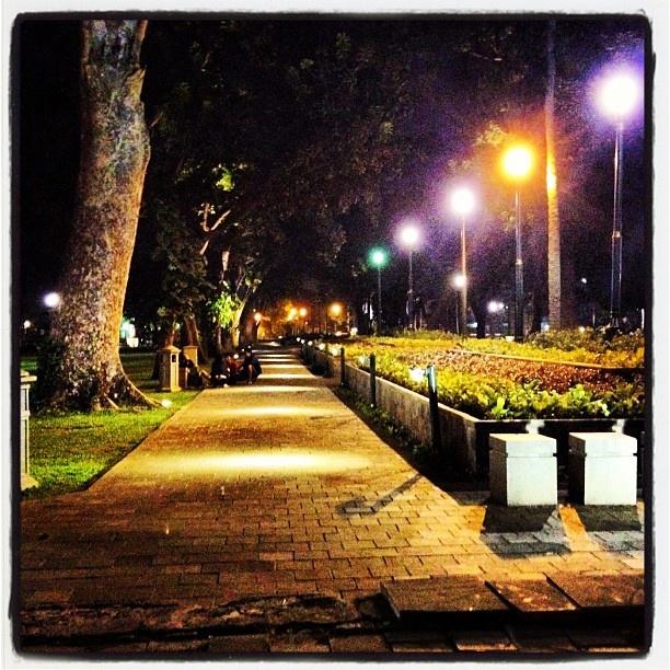 Taman Suropati kalau malam disinari lampu taman yang benar-benar indah..... #wishforjakarta #tamansuropati #indonesia #jakarta #menteng #park