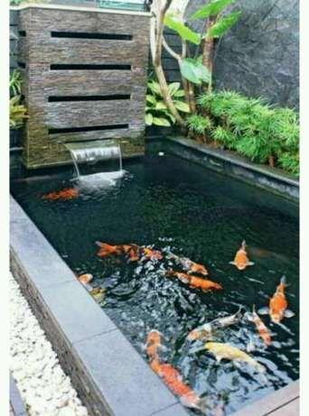 arsip: kolam ikan koi murah - semarang kota - rumah tangga