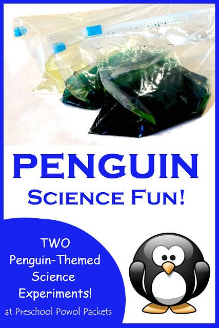 Penguin Science Experiment | Preschool Powol Packets