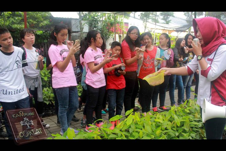 Menanam Benih Kakao - Tempat Pembibitan Kampung Coklat - SMP 2 Malang