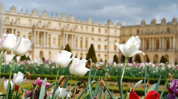 Chapels of Versailles | Palace of Versailles - RER Train Directions, Review & Tickets | Free ...