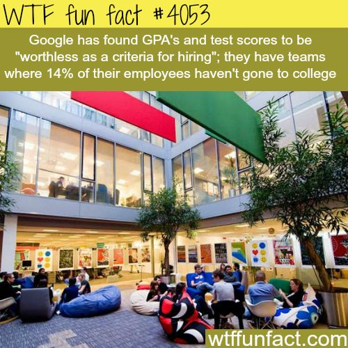 Does GPA matter when getting a job? - WTF fun facts