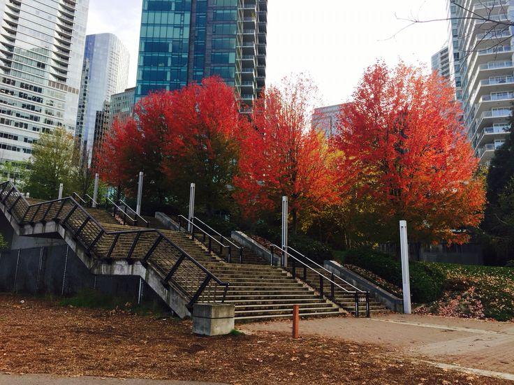 Vancouver, BC, Canada. 27.10.15