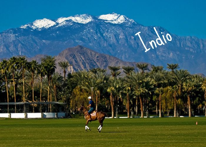 Postcard - Indio, California