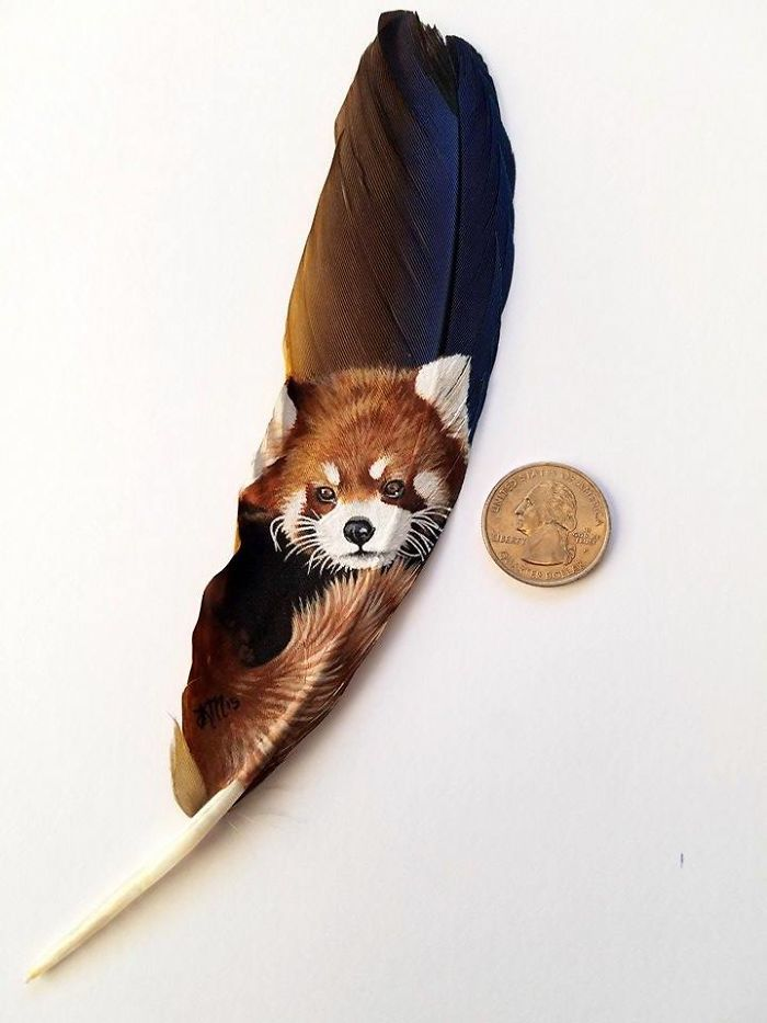 I Paint Realistic Animal Portraits On Delicate Feathers | Bored Panda:  Red Panda on a blue and gold macaw feather