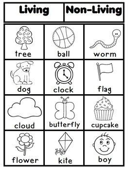 Worksheets Living Vs Nonliving Worksheet 25 best ideas about living and nonliving on pinterest sort for younger students