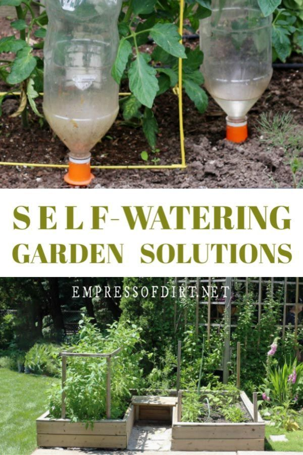 Smart Self Watering Garden Ideas
