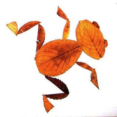 Animales con hojas | Rayito de Colores