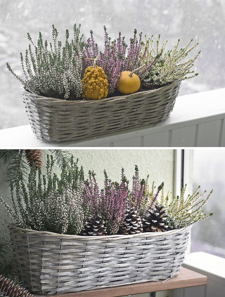 Autumn&Winter decor idea, winter balcony  https://www.facebook.com/kvetinovyobchodik/?fref=ts