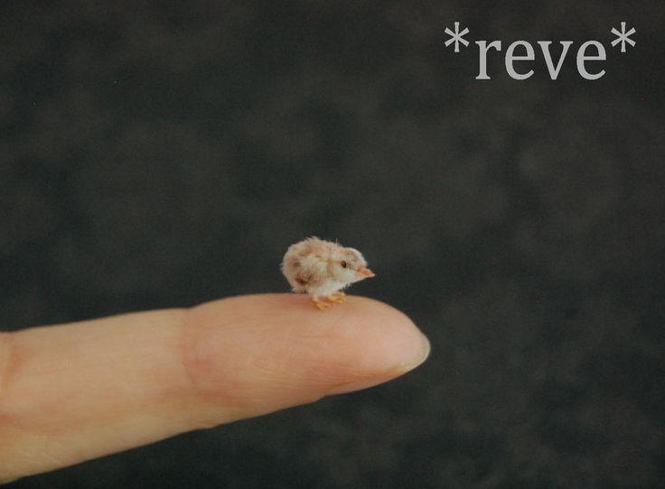 Miniature Baby Chick Handmade Sculpture by ReveMiniatures on deviantART