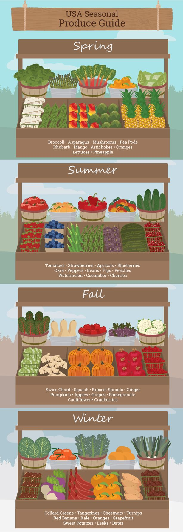 Guide to Farmers Markets: Benefits Beyond the Plate