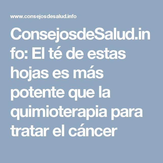 ConsejosdeSalud.info: El té de estas hojas es más potente que la quimioterapia para tratar el cáncer