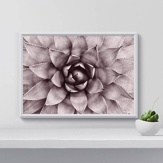Hey, I found this really awesome Etsy listing at https://www.etsy.com/listing/558620563/succulent-art-print-botanical-poster