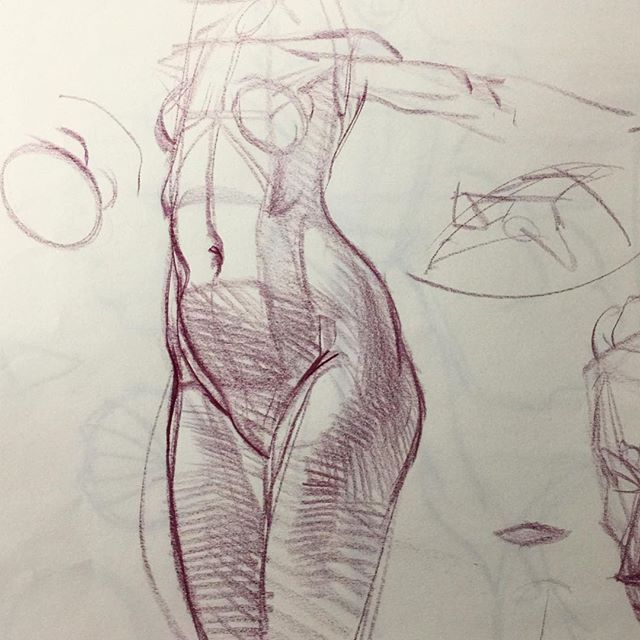 The 472 Best Drawings Images On Pinterest Sketches Anatomy And