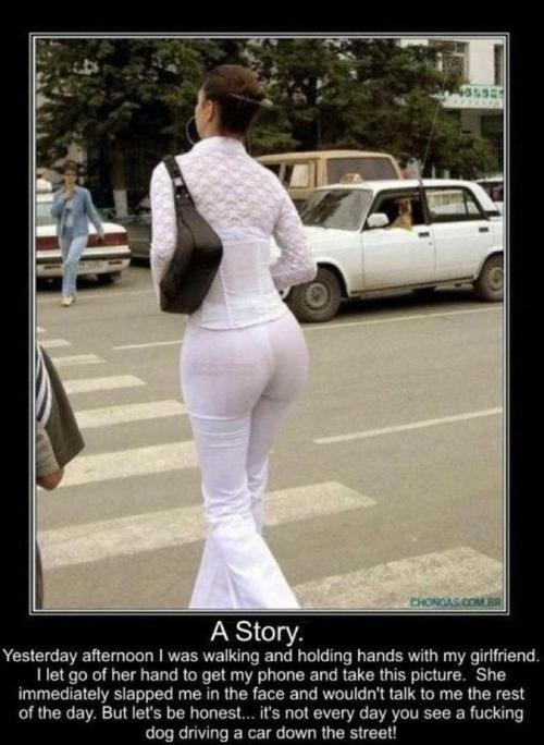 absolutely most funny pictures / posts on the internet!! i peed myself!! LOL